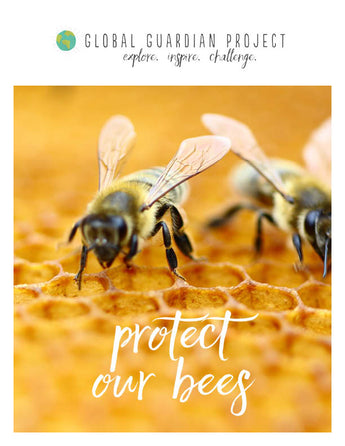Learn to Protect Our Bees