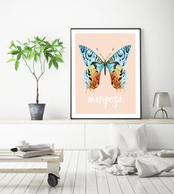 Spanish Butterfly Poster