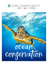 Ocean Conservation Learning Capsule
