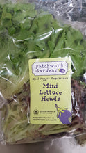 Mini Lettuce Heads, Patchworks