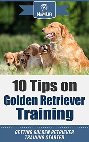 10 Tips on Golden Retriever Training: Getting Golden Retriever Training Started!