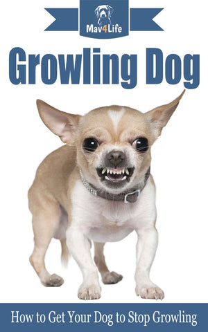 Growling Dog: How to Get your Dog to Stop Growling