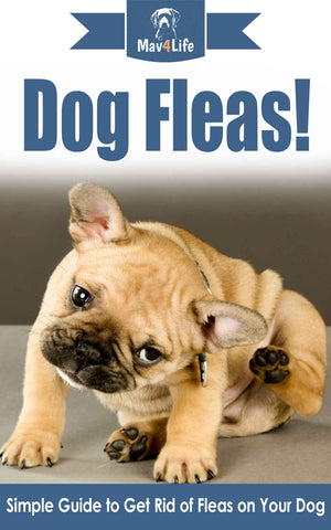 Dog Fleas!: Simple Guide to Get Rid of Fleas on Your Dog
