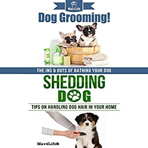 Dog Grooming! & Shedding Dog: Mav4Life