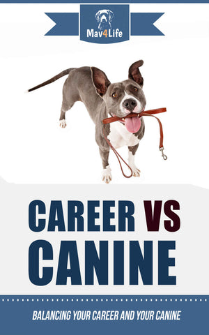 Career VS Canine: Balancing Your Career and Your Canine