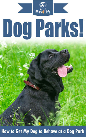 Dog Parks!: How to Get My Dog to Behave at a Dog Park