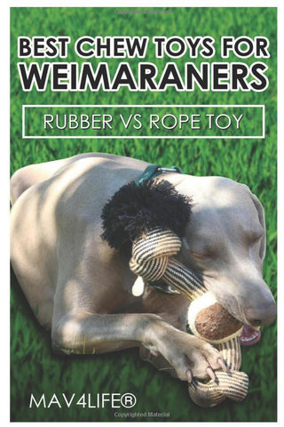 Best Chew Toys for Weimaraners: Rubber vs Rope Toy