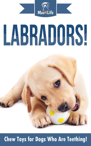 Labradors!: Chew Toys for Dogs Who Are Teething!