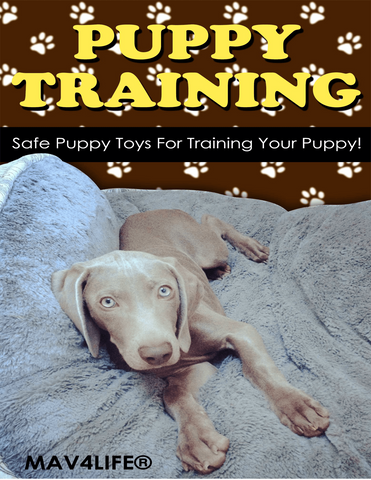 Puppy Training: Safe Puppy Toys For Training Your Puppy!