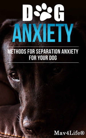 Dog Anxiety?: Methods For Separation Anxiety For Your Dog!