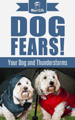 Dog Fears!: Your Dog and Thunderstorms
