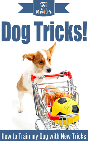 Dog Tricks!: How to Train My Dog with New Tricks