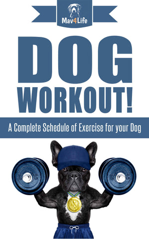 Dog Workout! : A Complete Schedule of Exercise for Your Dog
