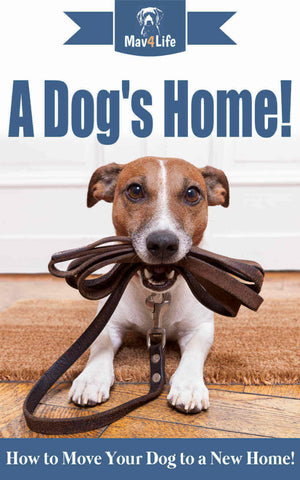 A Dogs Home! : How to Move Your Dog to a New Home!