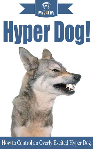 Hyper Dog!: How to Control an Overly Excited Hyper Dog