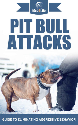 Pit Bull Attacks: Guide to Eliminating Aggressive Behavior