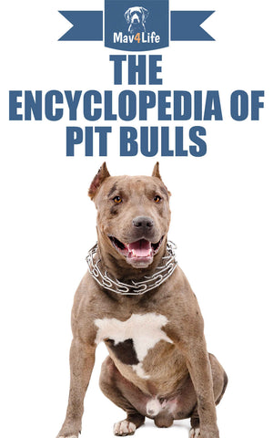 The Encyclopedia of Pit Bulls