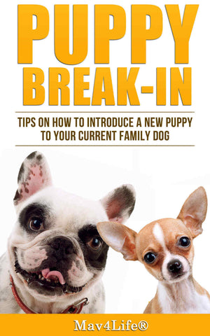 Puppy Break-In: Tips On How To Introduce A New Puppy To Your Current Family Dog