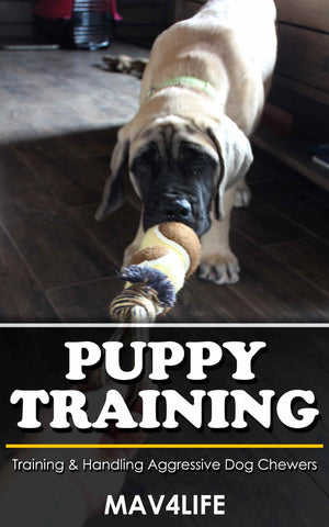 Puppy Training: Training & Handling Aggressive Dog Chewers