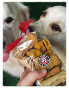 Shop Baked Dog Biscuits