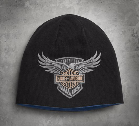Men's 115th Anniversary Reversible Knit Hat
