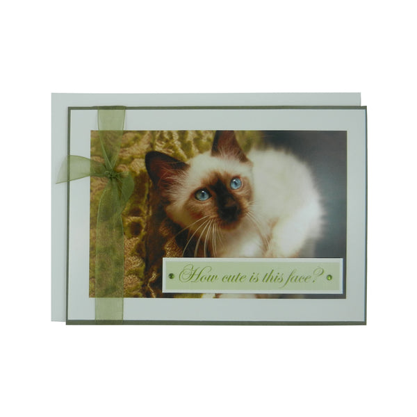 Handmade Cat Greeting Card - How cute is this face? - blank cat notecard - cat lover gift