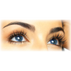Berrywell Eyebrow Eyelash Tint Kit (10-Pieces) - FREE SHIPPING - Gold Cosmetics & Supplies