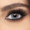 FreshLook Colors Monthly - Misty Gray