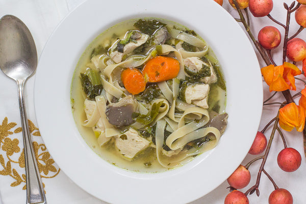 low-fodmap-slow-cooker-chicken-soup
