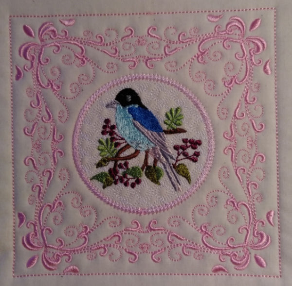Little Bird 6 x 6