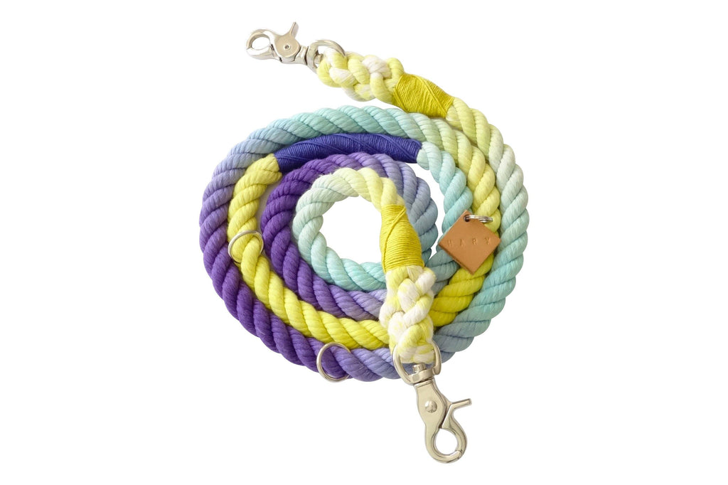 Limited Edition WeHo Rope Leash - SHOP HARX