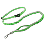 Hands Free Elastic Bungee Dog Leash