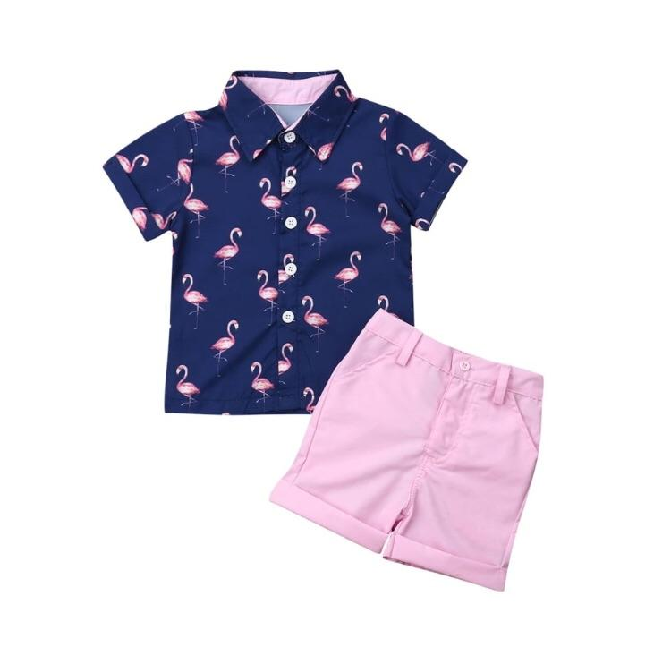 Boys Flamingo set