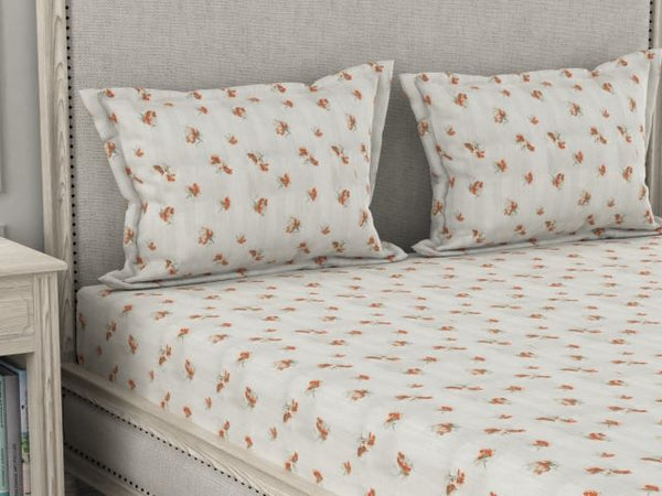 Amouve cotton bed sheet online