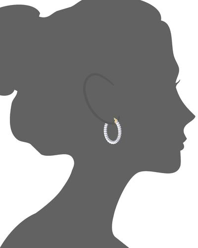 Clear Lucite Oval Cable Hoops VECTOR