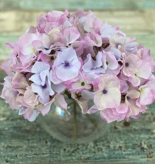 Hydrangeas in Glass Bowl