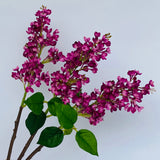 artificial lilac