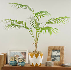 Potted Palm in Gold & White Design