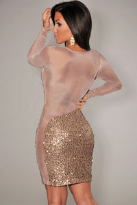 Sexy Gold All-Over Sequined Sheer Long Sleeves Bodycon Club Dress