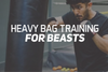 Heavy Bag Training For Beasts