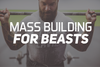 Mass Building For Beasts
