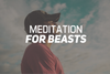Meditation For Beasts