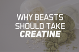 Why Beasts Should Take Creatine