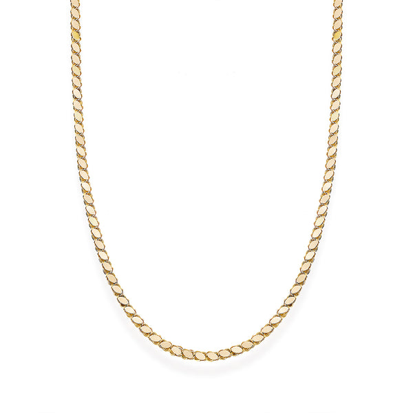 Chain Medium Necklace