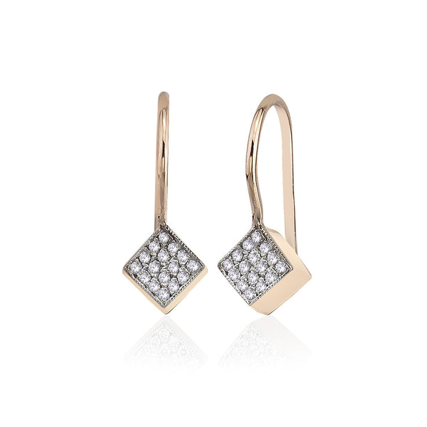 Cubic Big Shine Earrings