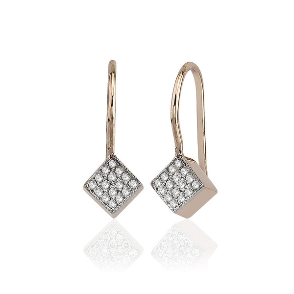 Cubic Med Shine Earrings