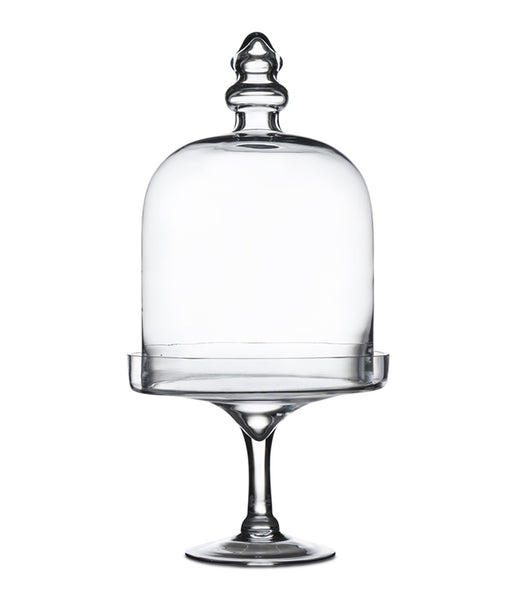 Elegant Glass Cloche