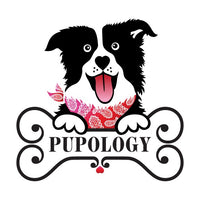 Pupology Dog Boutique in Austin, Texas