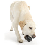 Coal Chew Toy by Planet Dog Available at Pupology Boutique