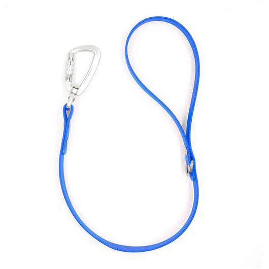 Blue Traffic Lead Leash by Petoji for Pupology Boutique